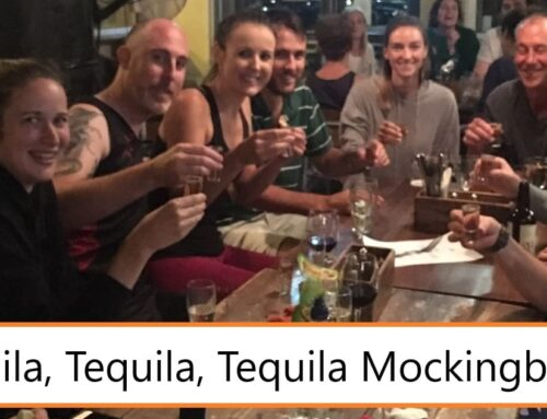 Quarantine Corner – Meet The Team (Episode 5 – Tequila Mockingbirds)